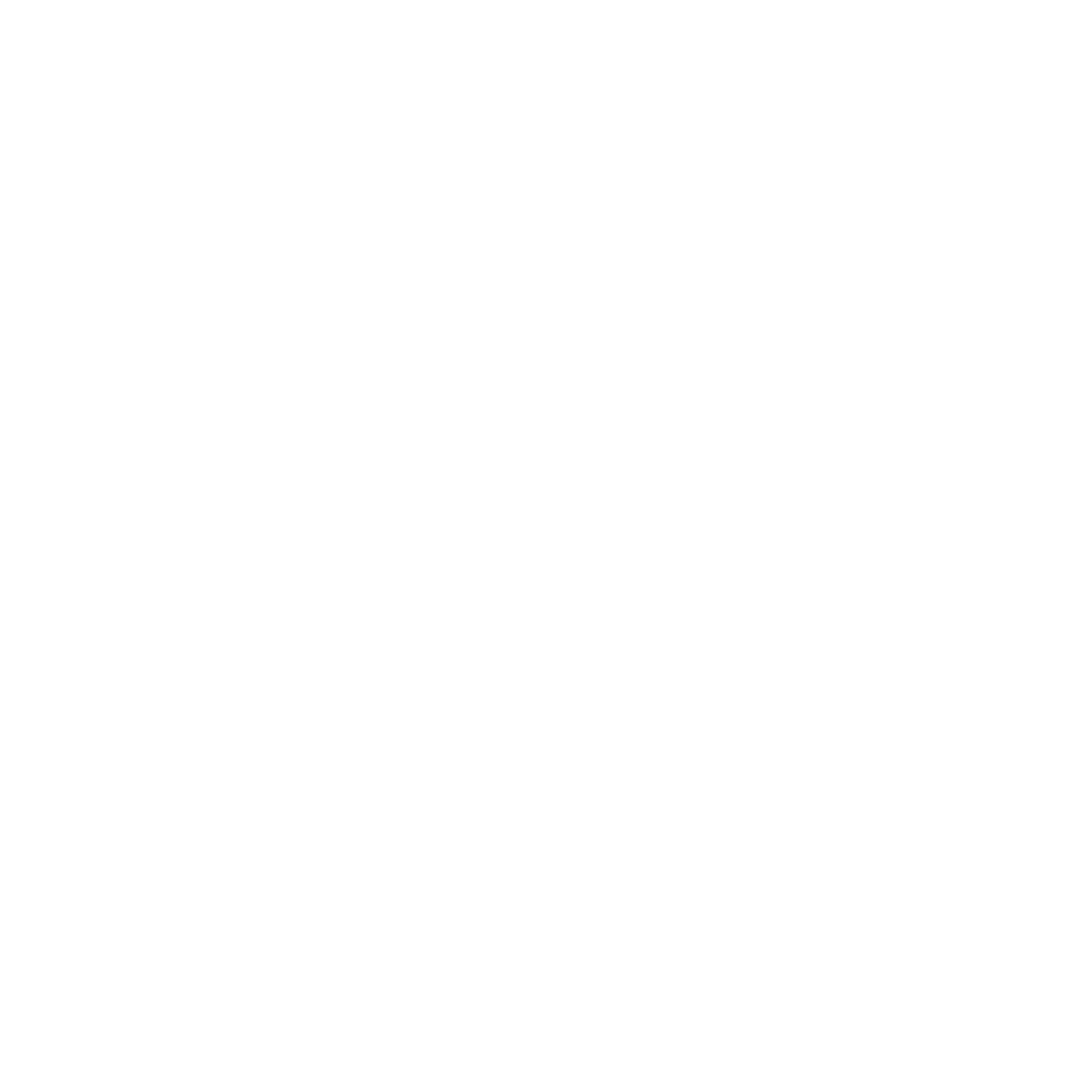 Max8白底logo